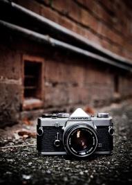 Foto gevonden op Pinterest www.prismyard.com